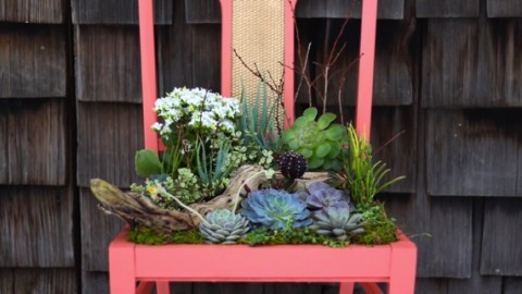 DIY Succulent Planter | DIY Joy Projects and Crafts Ideas