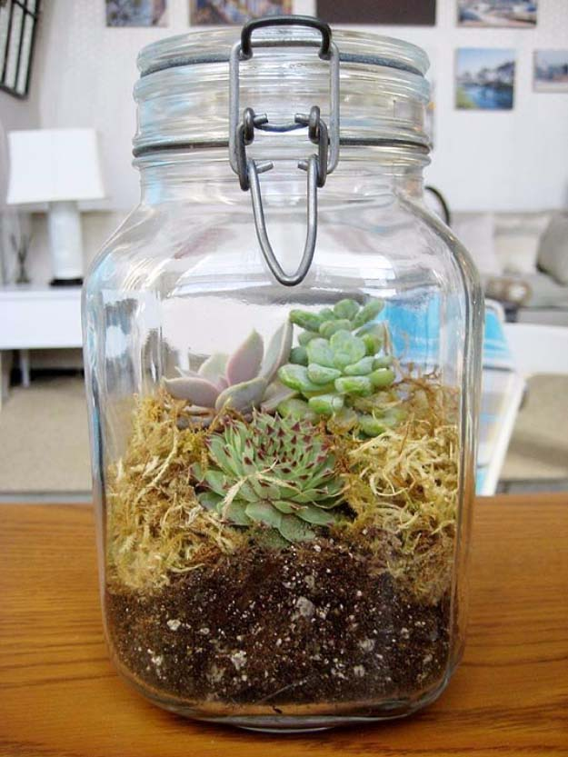 Homemade DIY Gifts in A Jar | Best Mason Jar Cookie Mixes and Recipes, Alcohol Mixers | Fun Gift Ideas for Men, Women, Teens, Kids, Teacher, Mom. Christmas, Holiday, Birthday and Easy Last Minute Gifts | Terrarium in Jar Gift for Green Thumbed Loved Ones #diy