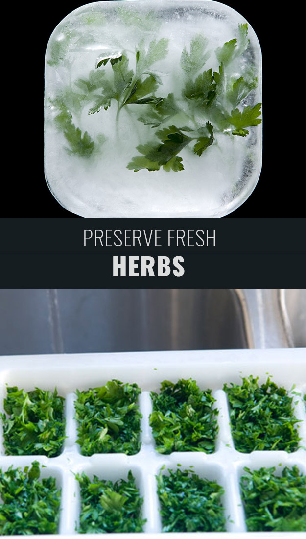 Coolest Cooking Hacks, Tips and Tricks for Easy Meal Prep, Recipe Shortcuts and Quick Ideas for Food | Preserve Fresh Herbs | http://cooking-tips-diy-kitchen-hacks