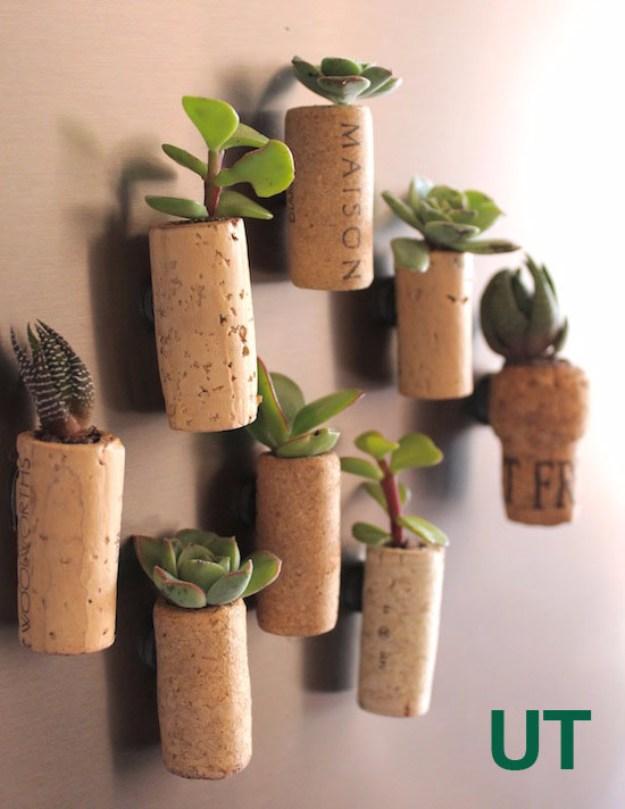 Succulents Crafts and DIY Projects - Cork Succulent Planters - How To Make Fun, Beautiful and Cool Succulent Cactus Wedding Favors, Centerpieces, Mason Jar Ideas, Flower Pots and Decor http://diyjoy.com/diy-ideas-succulents-crafts