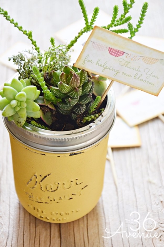 Succulents Crafts and DIY Projects - DIY Mason Jar Mini Succulent Garden - How To Make Fun, Beautiful and Cool Succulent Cactus Wedding Favors, Centerpieces, Mason Jar Ideas, Flower Pots and Decor #crafts #succulents #gardening