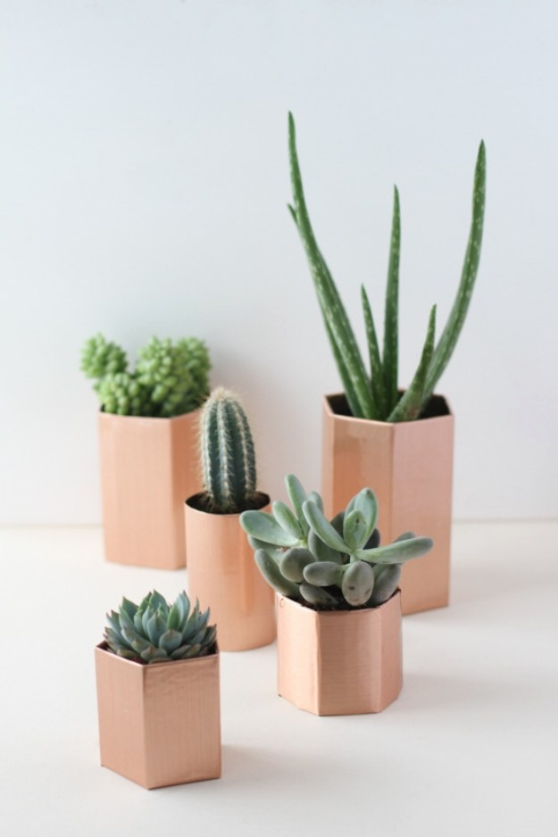 Succulents Crafts and DIY Projects - DIY Metallic Geometric Succulent Planters in 5 Minutes - How To Make Fun, Beautiful and Cool Succulent Cactus Wedding Favors, Centerpieces, Mason Jar Ideas, Flower Pots and Decor http://diyjoy.com/diy-ideas-succulents-crafts