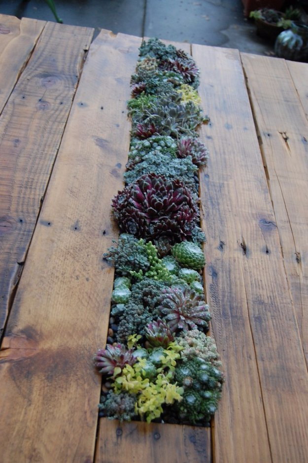 DIY Pallet Furniture Ideas - DIY Pallet Succulent Table - Best Do It Yourself Projects Made With Wooden Pallets - Indoor and Outdoor, Bedroom, Living Room, Patio. Coffee Table, Couch, Dining Tables, Shelves, Racks and Benches