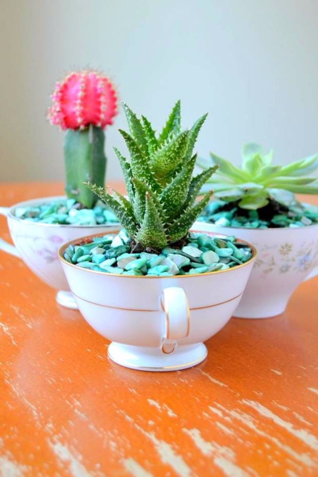 Succulents Crafts and DIY Projects - DIY Succulent Teacup Garden - How To Make Fun, Beautiful and Cool Succulent Cactus Wedding Favors, Centerpieces, Mason Jar Ideas, Flower Pots and Decor #crafts #succulents #gardening