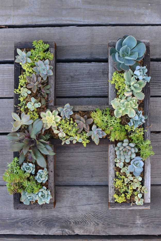 Succulents Crafts and DIY Projects - DIY Wall Mounted Succulent Letter - How To Make Fun, Beautiful and Cool Succulent Cactus Wedding Favors, Centerpieces, Mason Jar Ideas, Flower Pots and Decor #crafts #succulents #gardening