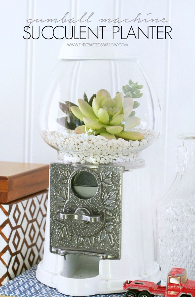 Succulents Crafts and DIY Projects - Gumball Machine Succulent Planter - How To Make Fun, Beautiful and Cool Succulent Cactus Wedding Favors, Centerpieces, Mason Jar Ideas, Flower Pots and Decor #crafts #succulents #gardening