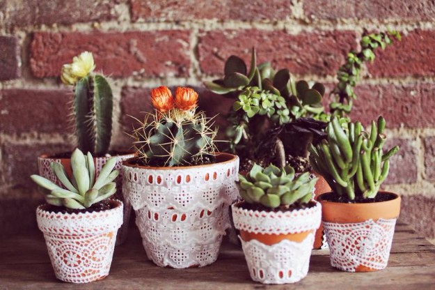 Succulents Crafts and DIY Projects - Lace Succulent Pots - How To Make Fun, Beautiful and Cool Succulent Cactus Wedding Favors, Centerpieces, Mason Jar Ideas, Flower Pots and Decor #crafts #succulents #gardening