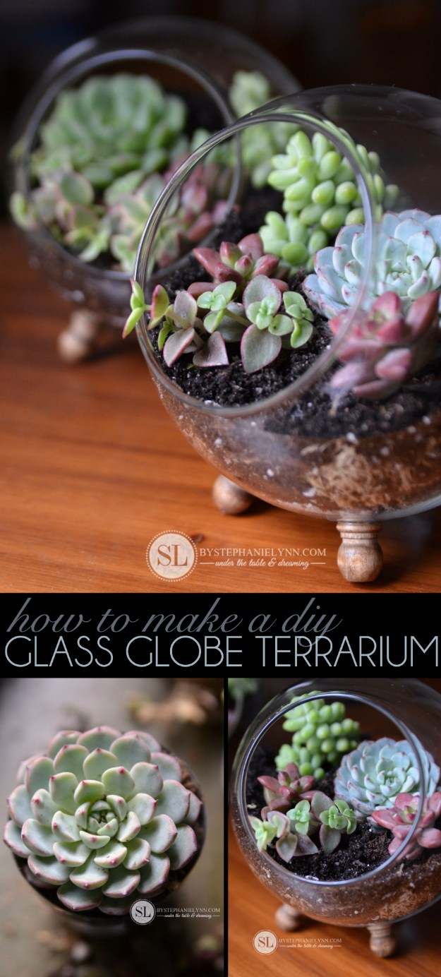 Succulents Crafts and DIY Projects - Succulent Glass Globe Terrarium - How To Make Fun, Beautiful and Cool Succulent Cactus Wedding Favors, Centerpieces, Mason Jar Ideas, Flower Pots and Decor #crafts #succulents #gardening