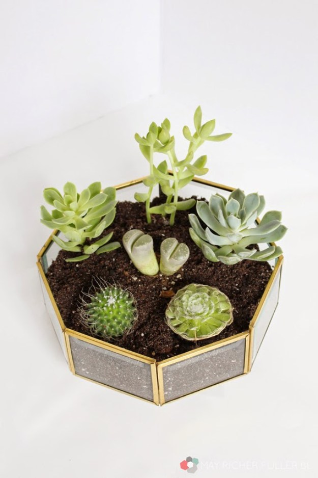 Succulents Crafts and DIY Projects - Upcycled Brass Light Fixture Succulent Terrarium - How To Make Fun, Beautiful and Cool Succulent Cactus Wedding Favors, Centerpieces, Mason Jar Ideas, Flower Pots and Decor #crafts #succulents #gardening