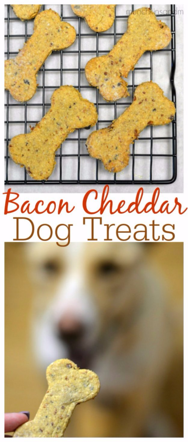 DIY Pet Recipes For Treats and Food - Bacon Cheddar Homemade Dog Treats - Dogs, Cats and Puppies Will Love These Homemade Products and Healthy Recipe Ideas - Peanut Butter, Gluten Free, Grain Free - How To Make Home made Dog and Cat Food