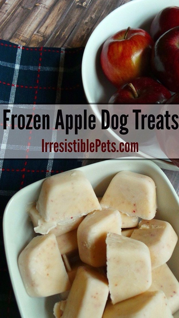 DIY Pet Recipes For Treats and Food - DIY Frozen Apple Dog Treats - Dogs, Cats and Puppies Will Love These Homemade Products and Healthy Recipe Ideas - Peanut Butter, Gluten Free, Grain Free - How To Make Home made Dog and Cat Food