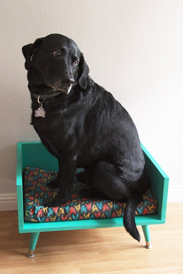 DIY Dog Beds - DIY Mid Century Style Dog Bed - Projects and Ideas for Large, Medium and Small Dogs. Cute and Easy No Sew Crafts for Your Pets. Pallet, Crate, PVC and End Table Dog Bed Tutorials #pets #diypet #dogs #diyideas