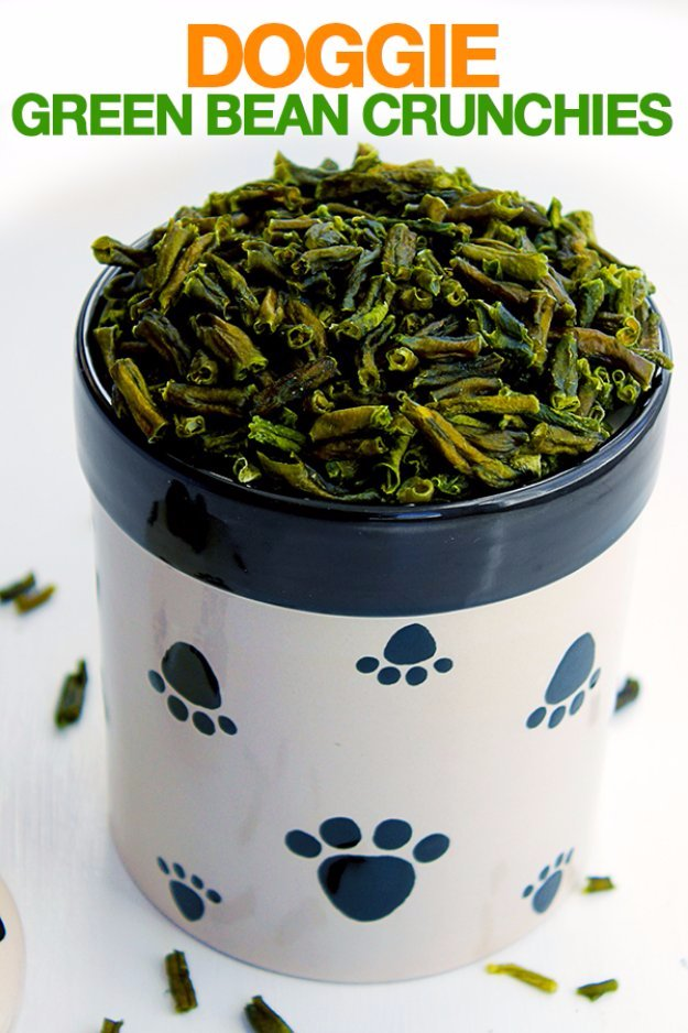 DIY Pet Recipes For Treats and Food - Doggie Green Bean Crunchies - Dogs, Cats and Puppies Will Love These Homemade Products and Healthy Recipe Ideas - Peanut Butter, Gluten Free, Grain Free - How To Make Home made Dog and Cat Food