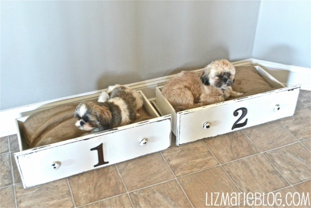 DIY Dog Beds - Drawer Dog Beds- Projects and Ideas for Large, Medium and Small Dogs. Cute and Easy No Sew Crafts for Your Pets. Pallet, Crate, PVC and End Table Dog Bed Tutorials #pets #diypet #dogs #diyideas
