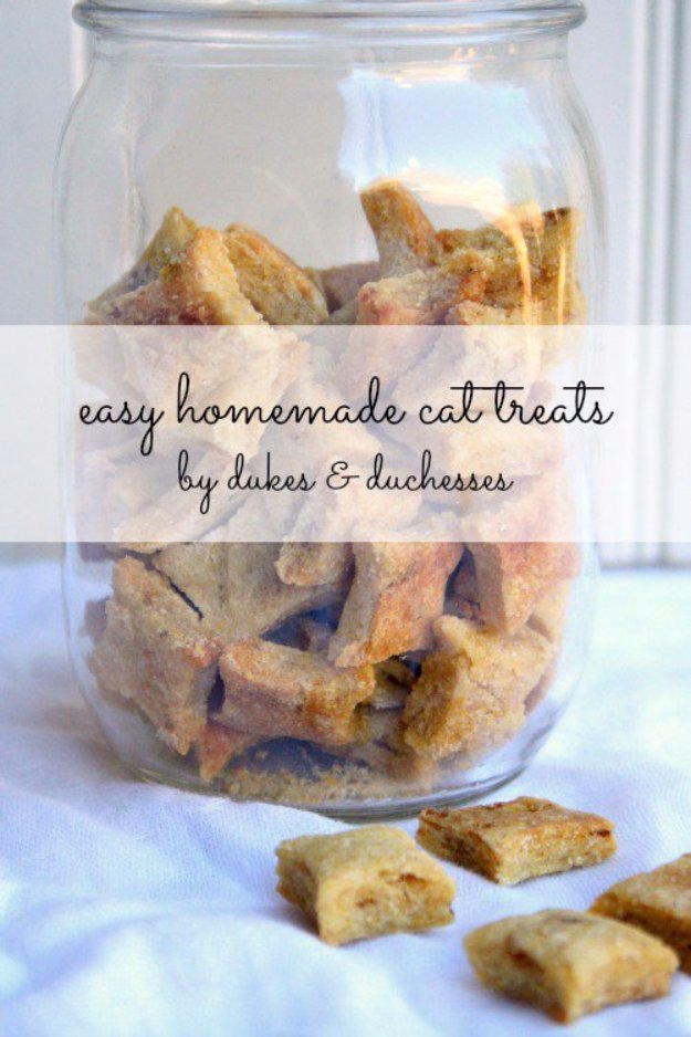DIY Pet Recipes For Treats and Food - Easy Homemade Cat Treats - Dogs, Cats and Puppies Will Love These Homemade Products and Healthy Recipe Ideas - Peanut Butter, Gluten Free, Grain Free - How To Make Home made Dog and Cat Food