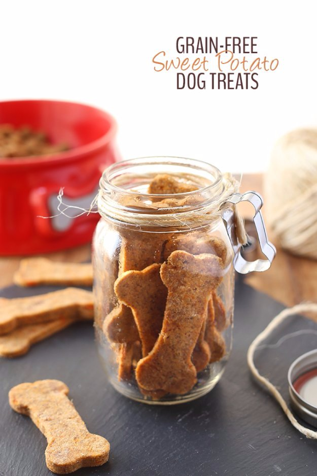 DIY Pet Recipes For Treats and Food - Grain Free Sweet Potato Dog Treats - Dogs, Cats and Puppies Will Love These Homemade Products and Healthy Recipe Ideas - Peanut Butter, Gluten Free, Grain Free - How To Make Home made Dog and Cat Food