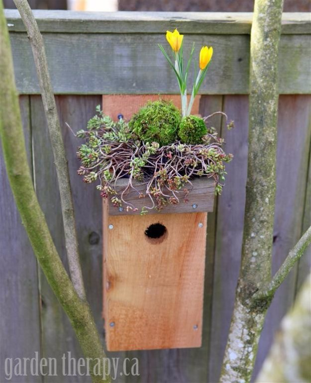 DIY Ideas to Get Your Backyard Ready for Summer - Green Roof Birdhouse - Cool Ideas for the Yard This Summer. Furniture, Games and Fun Outdoor Decor both Adults and Kids Will Enjoy
