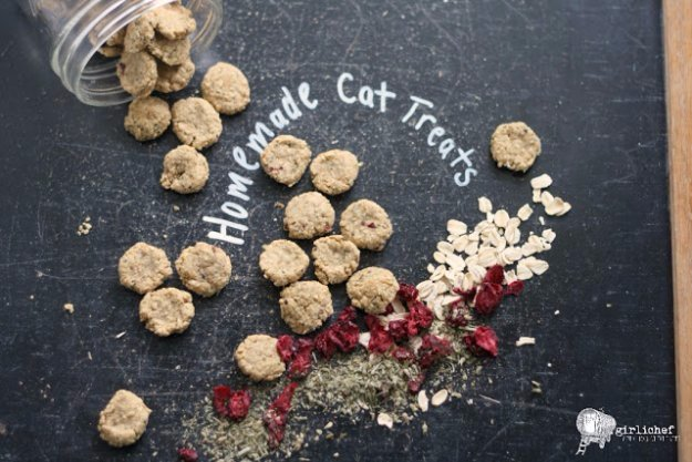 DIY Pet Recipes For Treats and Food - Homemade Chicken & Cranberry Cat Treats - Dogs, Cats and Puppies Will Love These Homemade Products and Healthy Recipe Ideas - Peanut Butter, Gluten Free, Grain Free - How To Make Home made Dog and Cat Food