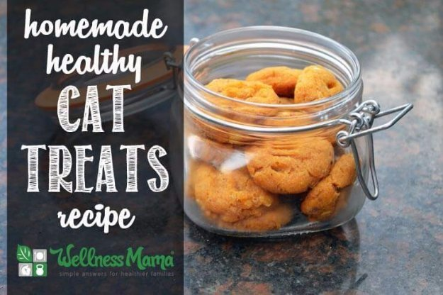 DIY Pet Recipes For Treats and Food - Homemade Healthy Cat Treats - Dogs, Cats and Puppies Will Love These Homemade Products and Healthy Recipe Ideas - Peanut Butter, Gluten Free, Grain Free - How To Make Home made Dog and Cat Food