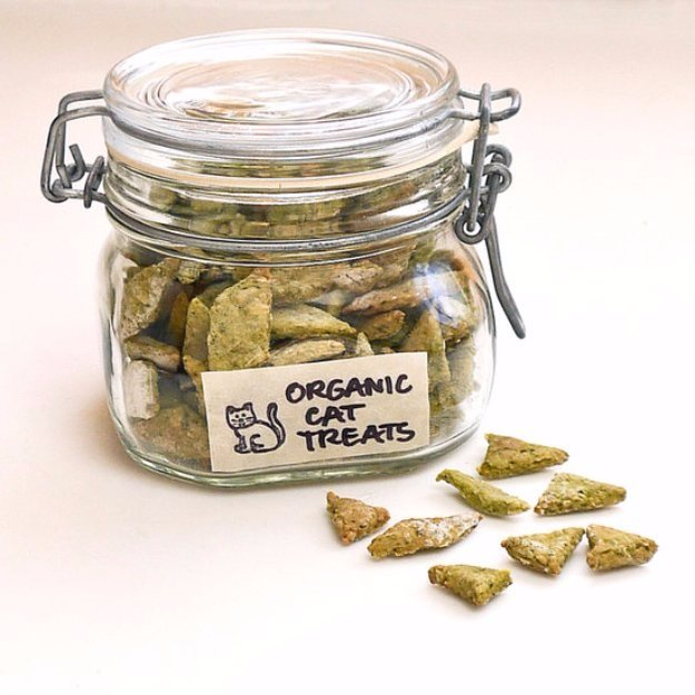 DIY Pet Recipes For Treats and Food - Homemade Organic Spinach and Chicken Cat Treats - Dogs, Cats and Puppies Will Love These Homemade Products and Healthy Recipe Ideas - Peanut Butter, Gluten Free, Grain Free - How To Make Home made Dog and Cat Food