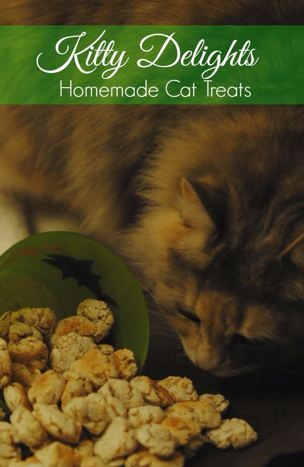 DIY Pet Recipes For Treats and Food - Kitty Delight Homemade Cat Treats - Dogs, Cats and Puppies Will Love These Homemade Products and Healthy Recipe Ideas - Peanut Butter, Gluten Free, Grain Free - How To Make Home made Dog and Cat Food