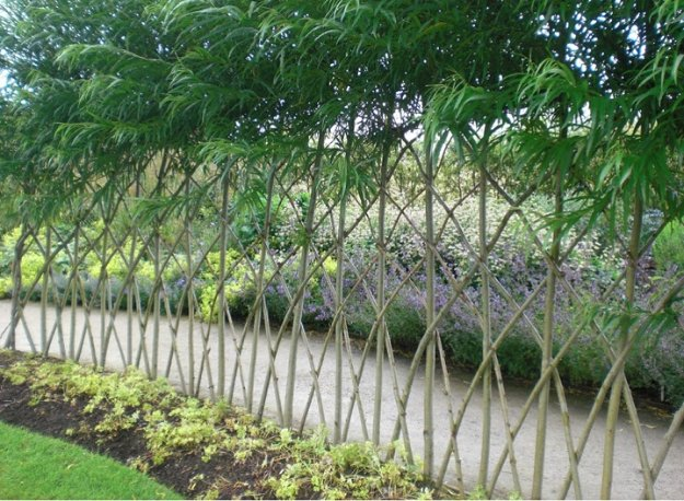 DIY Ideas for Your Garden - Make a Living Fence For Your Garden - Cool Projects for Spring and Summer Gardening - Planters, Rocks, Markers and Handmade Decor for Outdoor Gardens