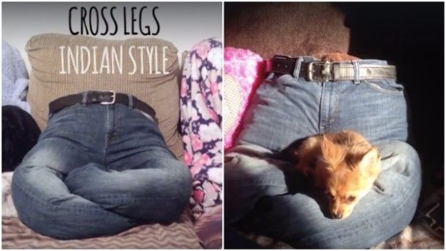 DIY Dog Beds - Pant Leg Puppy Bed - Projects and Ideas for Large, Medium and Small Dogs. Cute and Easy No Sew Crafts for Your Pets. Pallet, Crate, PVC and End Table Dog Bed Tutorials #pets #diypet #dogs #diyideas