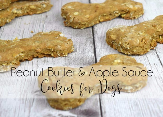 DIY Pet Recipes For Treats and Food - Peanut Butter and Apple Sauce Cookies for Dogs - Dogs, Cats and Puppies Will Love These Homemade Products and Healthy Recipe Ideas - Peanut Butter, Gluten Free, Grain Free - How To Make Home made Dog and Cat Food - http://diyjoy.com/diy-pet-recipes-food