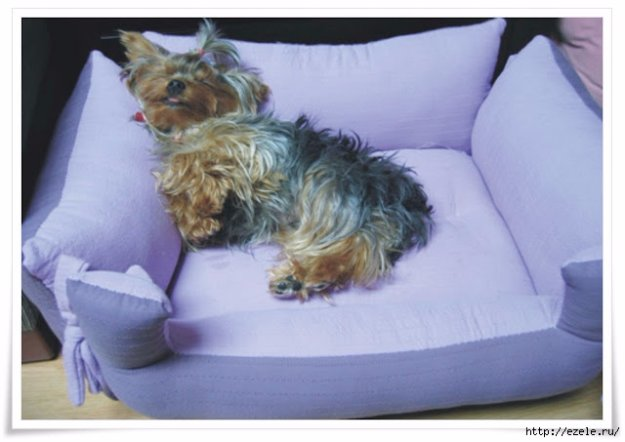 DIY Dog Beds - Pillow Bench For Your Furry Friend - Projects and Ideas for Large & 31 Creative DIY Dog Beds You Can Make For Your Pup - Page 5 of 6 ... pillowsntoast.com
