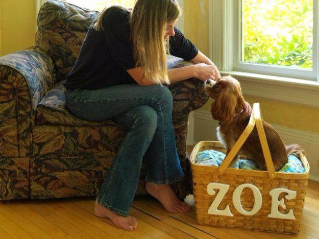 DIY Dog Beds - Travel Pet Bed Out of Picnic Basket - Projects and Ideas for Large, Medium and Small Dogs. Cute and Easy No Sew Crafts for Your Pets. Pallet, Crate, PVC and End Table Dog Bed Tutorials #pets #diypet #dogs #diyideas