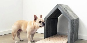 Super Easy & Very Sturdy DIY Concrete Dog House