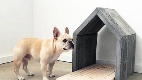 Super Easy & Very Sturdy DIY Concrete Dog House | DIY Joy Projects and Crafts Ideas