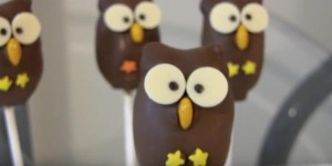 Darling Owl Cake Pop Balls You Can Learn How to Make!