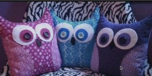 DIY Adorable and Endearing Wide Eyed Owls!