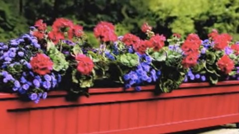 Charming Flower Outdoor Planter Box Brightens Up Any Yard! | DIY Joy Projects and Crafts Ideas