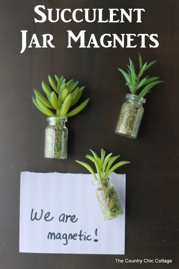 DIY Kitchen Decor Ideas - Succulent Jar Magnets - Creative Furniture Projects, Accessories, Countertop Ideas, Wall Art, Storage, Utensils, Towels and Rustic Furnishings #diyideas #kitchenideass