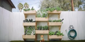 WOW Vertical Gardening Is So Clever And Easy To Build!