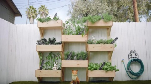 WOW Vertical Gardening Is So Clever And Easy To Build! | DIY Joy Projects and Crafts Ideas