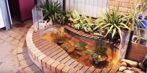 "This is The Coolest Outdoor ""Bathtub"" Fish Pond!!!"