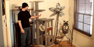 Build Your Heavy Duty Cat Tree So Your Cat Will Have Some Fun Entertainment!