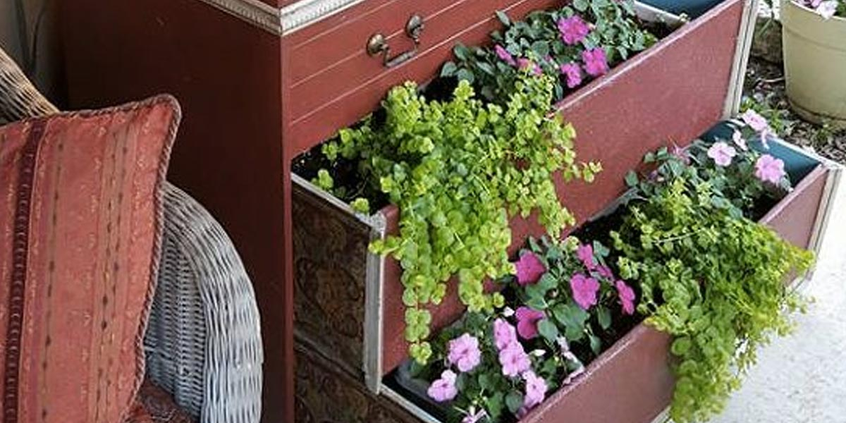 Creative DIY Planters - DresserPlanter - Best Do It Yourself Planters and Crafts You Can Make For Your Plants - Indoor and Outdoor Gardening Ideas - Cool Modern and Rustic Home and Room Decor for Planting With Step by Step Tutorials #gardening #diyplanters #diyhomedecor