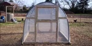 Most of Us Wish We Had A Greenhouse At One Point In Our Life & Here's How To Make One!