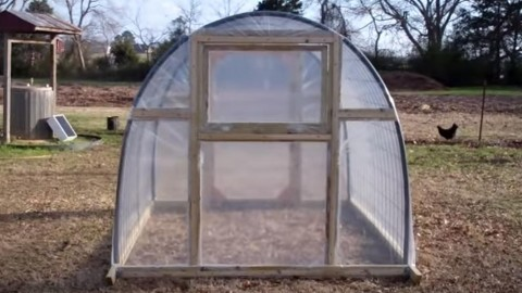 Most of Us Wish We Had A Greenhouse At One Point In Our Life & Here's How To Make One! | DIY Joy Projects and Crafts Ideas