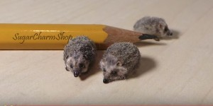 Don't You Want to Make One of These Precious Little Polymer Clay Hedgehogs?