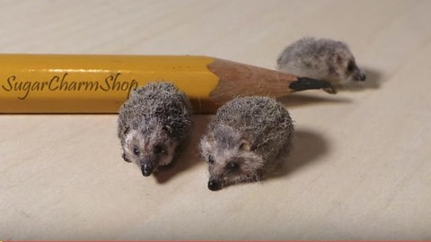 Don't You Want to Make One of These Precious Little Polymer Clay Hedgehogs? | DIY Joy Projects and Crafts Ideas