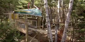 Build an Epic Kids Tree Fort That Will Surpass Most Tree Houses You See!