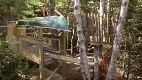 Build an Epic Kids Tree Fort That Will Surpass Most Tree Houses You See! | DIY Joy Projects and Crafts Ideas