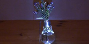 You've Got to See How This Amazing Light Bulb Vase Works!