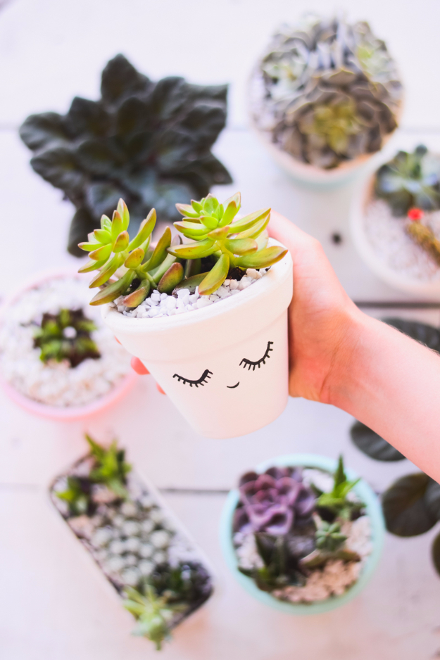 Cheap Crafts To Make and Sell - Succulent Clay Vase - Inexpensive Ideas for DIY Craft Projects You Can Make and Sell On Etsy, at Craft Fairs, Online and in Stores. Quick and Cheap DIY Ideas that Adults and Even Teens Can Make on A Budget #diy #crafts #craftstosell #cheapcrafts
