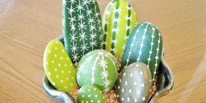 I Couldn't Believe These Painted Cactus Rocks Weren't Real!